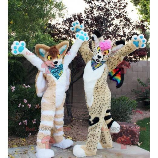 2 krásné a barevné kočičí maskoti - Redbrokoly.com