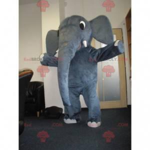 Very cute gray elephant mascot - Redbrokoly.com