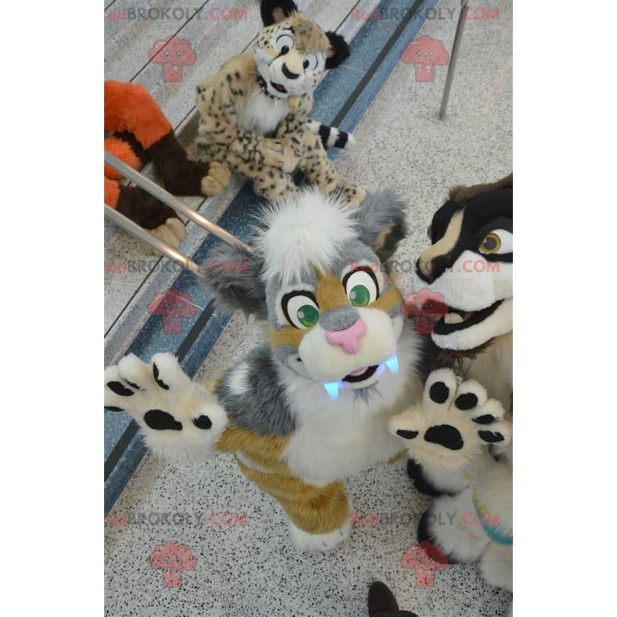 Very cute gray beige and white cat mascot - Redbrokoly.com