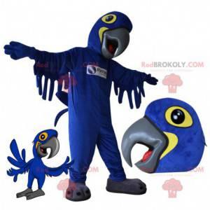 Blaues und gelbes Papageienmaskottchen. Vogel Maskottchen -