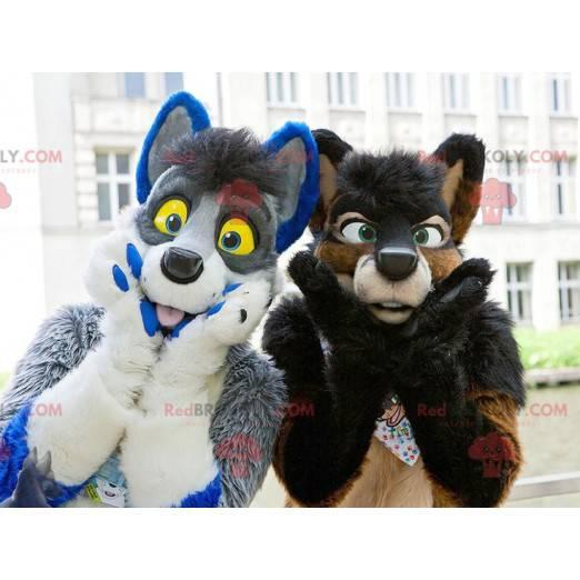 2 chlupatí a barevní psí maskoti - Redbrokoly.com