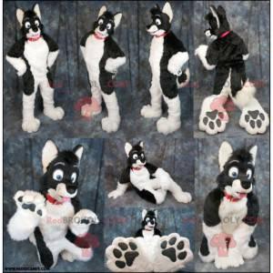 Black and white dog mascot - Redbrokoly.com