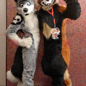 2 mascots of soft and hairy dogs - Redbrokoly.com