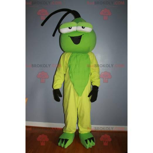 Green and yellow insect mascot - Redbrokoly.com