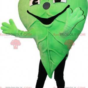 Zelený list maskot. Přírodní maskot - Redbrokoly.com