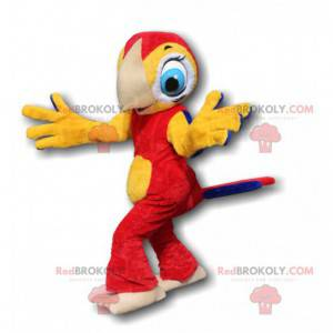 Red and yellow parrot mascot with pretty blue eyes -