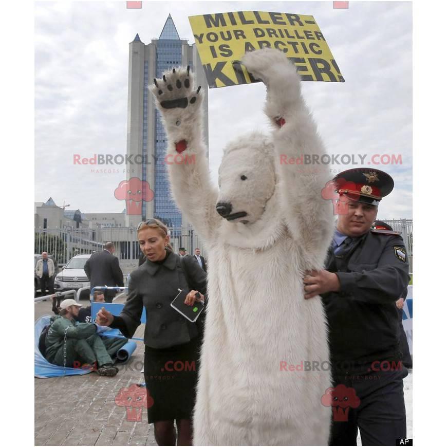 Polar bear mascot polar bear - Redbrokoly.com