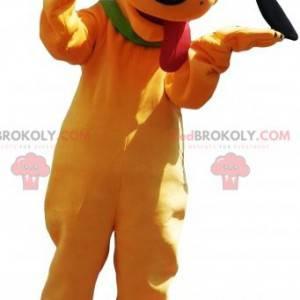 La mascota Plutón del famoso perro amarillo de Disney -