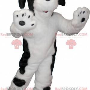 Weiches und haariges Schwarz-Weiß-Hundemaskottchen -