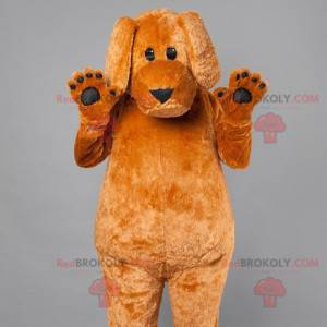 Big brown dog mascot. Dog costume - Redbrokoly.com