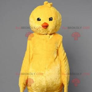 Žlutá kočka maskot. Kanárský pták maskot - Redbrokoly.com