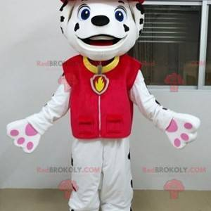 White and black dalmatian dog mascot dressed as a firefighter -