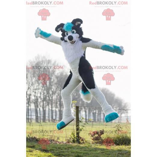 Black and blue white dog mascot - Redbrokoly.com