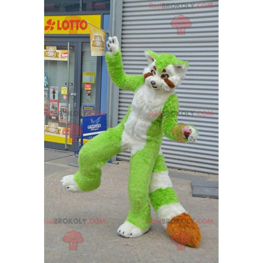 Maskot kočky zelené, bílé a oranžové mýval - Redbrokoly.com