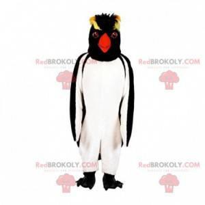 Penguin penguin maskot. Crested penguin maskot - Redbrokoly.com