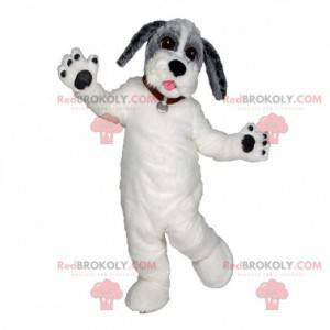Gray and black white dog mascot. Beautiful tricolor dog -