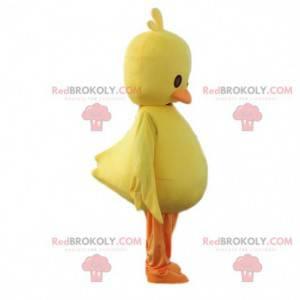 Maskotka żółty kurczak. Kostium pisklęcia, kanarek olbrzymi -