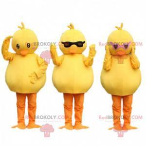 3 mascots chicks, yellow canaries. Bird costume - Redbrokoly.com