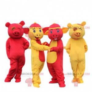4 gelbe und rote Schweinemaskottchen. 4 bunte asiatische