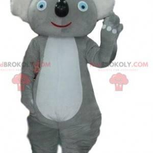 Mascotte koala grigio, costume Australia, animale australiano -