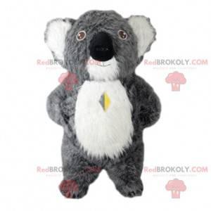 Mascotte grijze koala, Australië kostuum, Australische dieren -