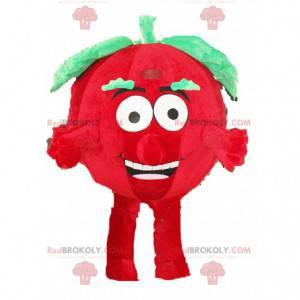 Tomatenmaskottchen, Gemüsekostüm, Verkleidung mit roten