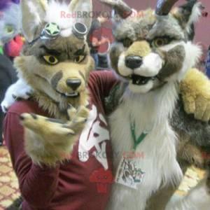 2 furry and colorful dog mascots - Redbrokoly.com