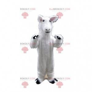 Hvit hest maskot, lama kostyme, hvitt dyr - Redbrokoly.com
