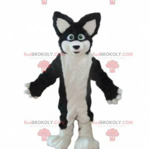 Husky Hundemaskottchen, Fuchs Kostüm, haarige Verkleidung -