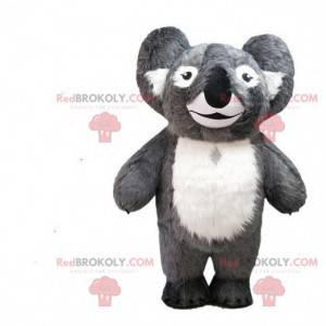 Grå koala maskot, kostume Australien, australsk dyr -