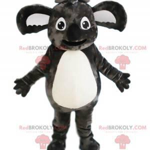 Šedá koala maskot, australské zvíře, exotický kostým -