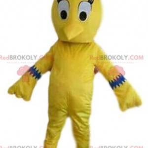 Maskot žlutého ptáka, kanárský kostým, žlutý kostým -