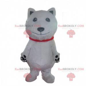 Maskot ledního medvěda, kostým bílého psa, bílý převlek -