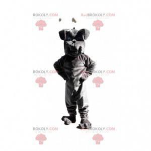 Šedý buldok maskot, kostým psa, kostým pejska - Redbrokoly.com