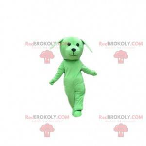 Zielony pies maskotka, kostium pieska, zielone przebranie -
