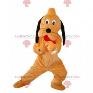 Maskott Pluto, berømt hund orange og svart Walt Disney -