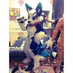 Modré a bílé psí maskot - Redbrokoly.com
