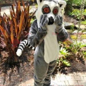 Little gray and white monkey lemur mascot - Redbrokoly.com
