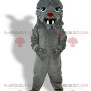 Gray bulldog mascot, dog costume, naughty dog - Redbrokoly.com