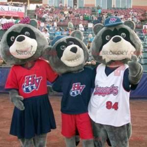 3 dreifarbige Bären-Waschbären-Maskottchen - Redbrokoly.com