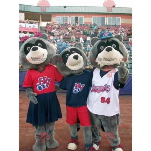3 tricolor bear raccoon mascots - Redbrokoly.com