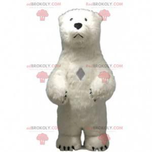 Maskot ledního medvěda, kostým ledního medvěda, medvěd grizzly