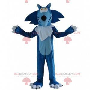 Blaues und weißes Wolfsmaskottchen, riesiges Wolfskostüm -