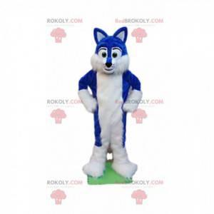 Blaues und weißes Hundemaskottchen, haariges Hundekostüm -