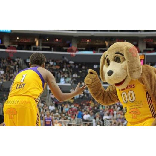 Brown dog mascot in sportswear - Redbrokoly.com