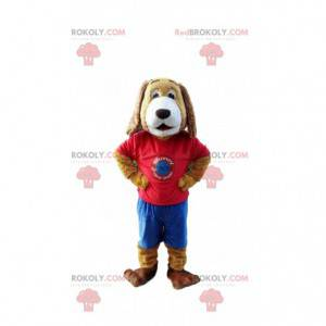 Hundemaskottchen gekleidet in einem bunten Outfit, Hundekostüm