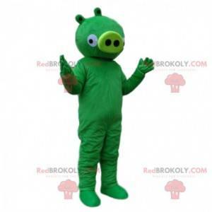 Angry Bird Video Green Pig maskotka. Kostium zły ptak -