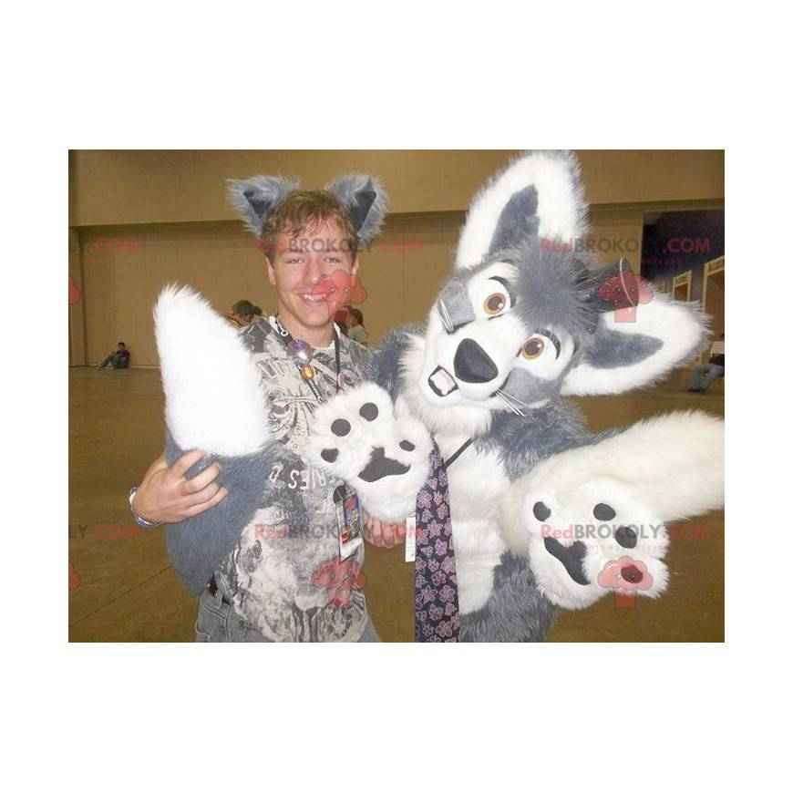 Gray and white dog mascot - Redbrokoly.com