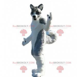 Husky dog mascot, gray dog costume, canine costume -