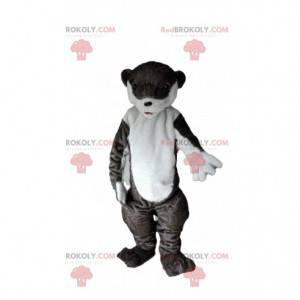 Mascotte lontra, costume leone marino, costume leone marino -
